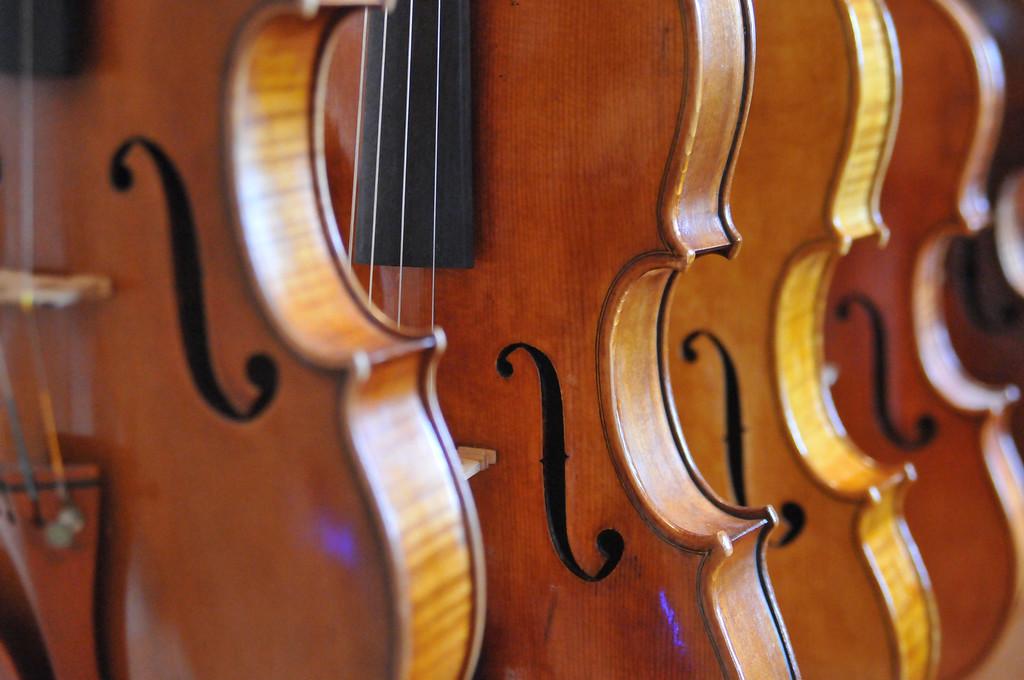 DSC-0202 Violins, Bellevue, KY, PBamber